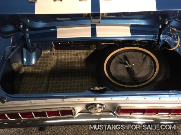 Shelby GT-350 for sale