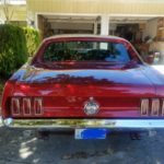 1969 428 CJ GT Mustang Coupe - rear view