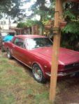 1966 mustang – $1800 (tacoma)